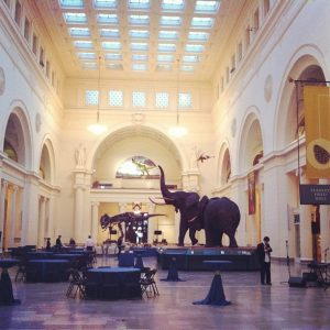 dueling pianos in chicago field museum