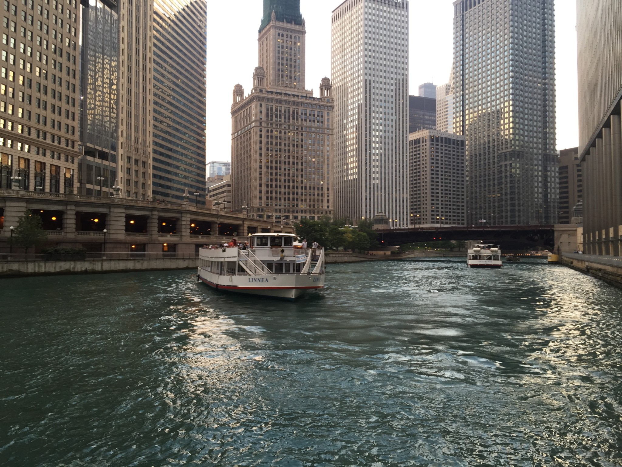 Chicago Boat Tours are More Fun with Felix and Fingers!