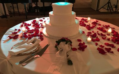 Oakbrook Terrace Wedding