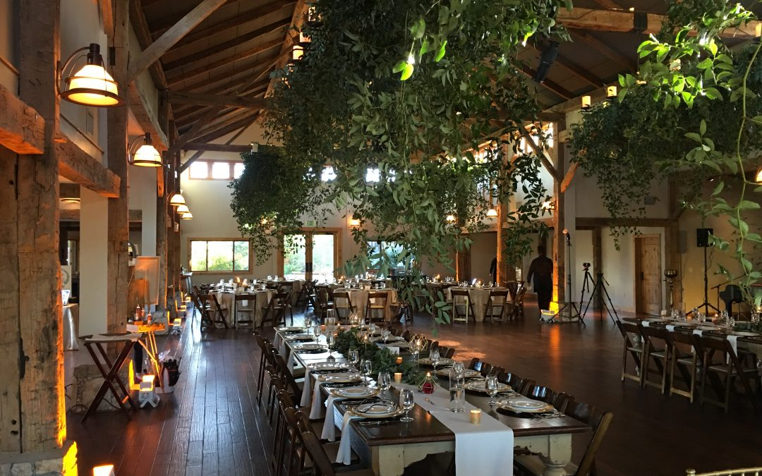 Camp Lucy Wedding Event
