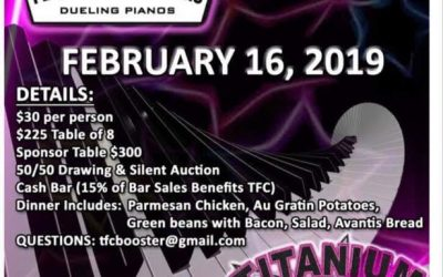 Titanium Force Cheer Squad Fundraiser