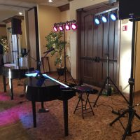Sturgeon Bay Stone Harbor Wedding performance