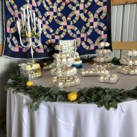 Carlinville Farm Wedding desserts