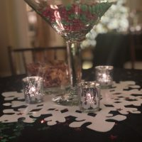 Private Residence Holiday Birthday Bash