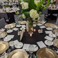 Cantigny Park Emerald Evening Fundraiser